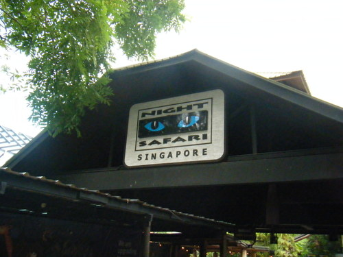 2011_0818singapore0009